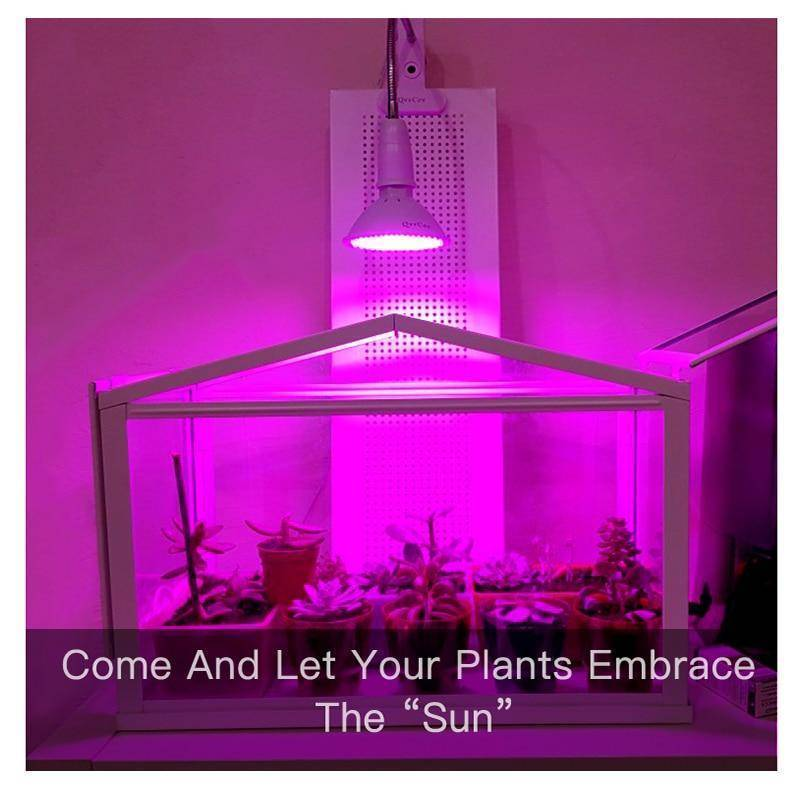Full Spectrum LED Grow Lights