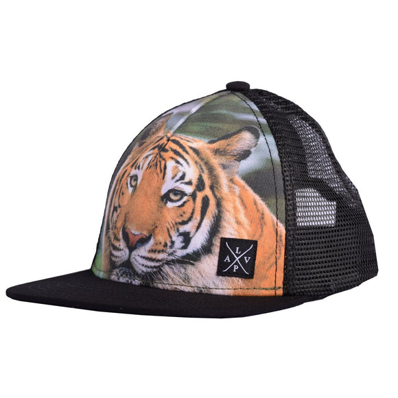 Casquette TIGER Lp apparel