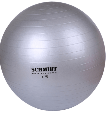 Schmidt Gym Ball