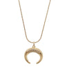 Horn Gold Necklace and Zircon