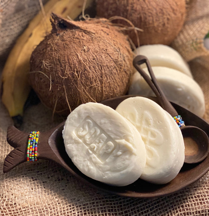 Fresh Coconut Milk Soap | Unscented | 4 Bars