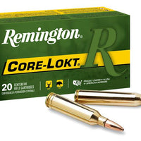 Remington300 win mag 180gr PTD SP