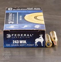 Federal .243win 100gr SP