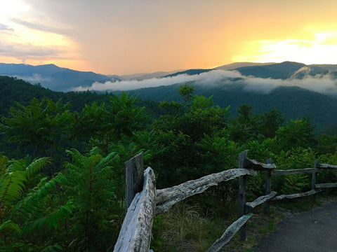 The Great Smoky Mountain National Park- Gatlinburg and Pigeon Forge, Tennessee