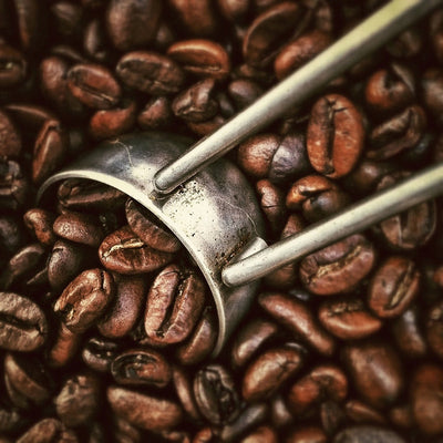 Coffee - the luxury of black gold
