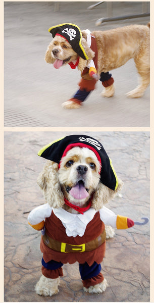 Halloween Cool Caribbean Pirate Pet Halloween Costume for Dogs/Cats