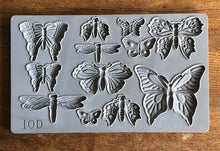 Load image into Gallery viewer, IOD Monarch 6 x 10 Decor Moulds