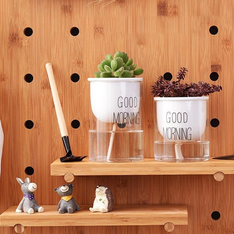 Hydroponic Self Watering Planter