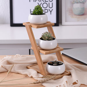 Triple Succulent Bamboo Shelf
