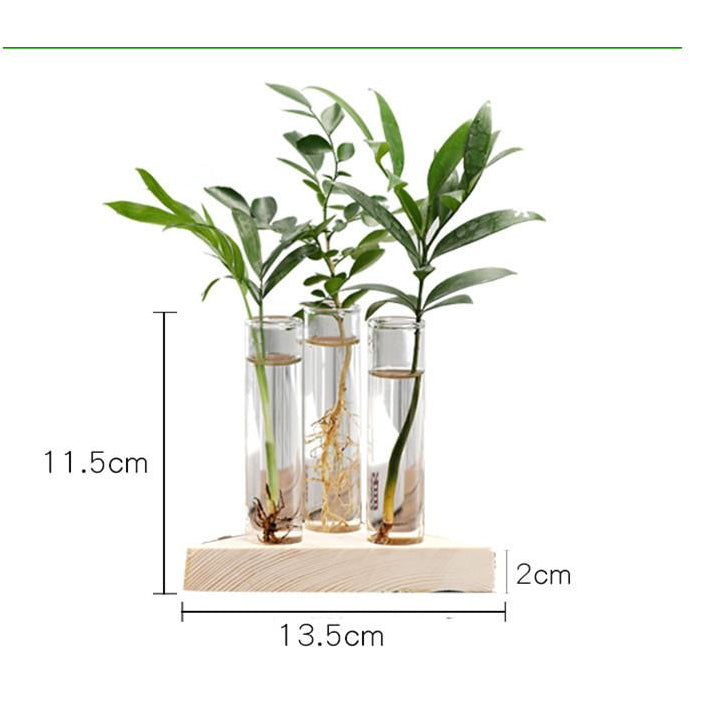Nordic Style Tube Glass Vase with Wood Base Hydroponic Vase Elegant Tabletop Vase for Water Planting Flower Terrarium Container