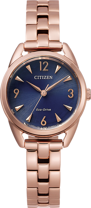 Citizen Eco-Drive Drive Collection LTR