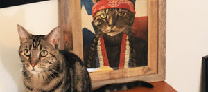 cat with portrait in background