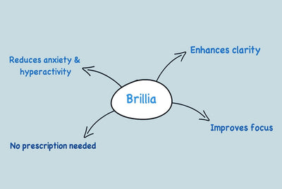 Why & How Brillia Works Video
