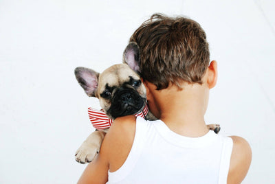 Kid's Best Friend: How Your Family Pet Can Reduce Anxiety