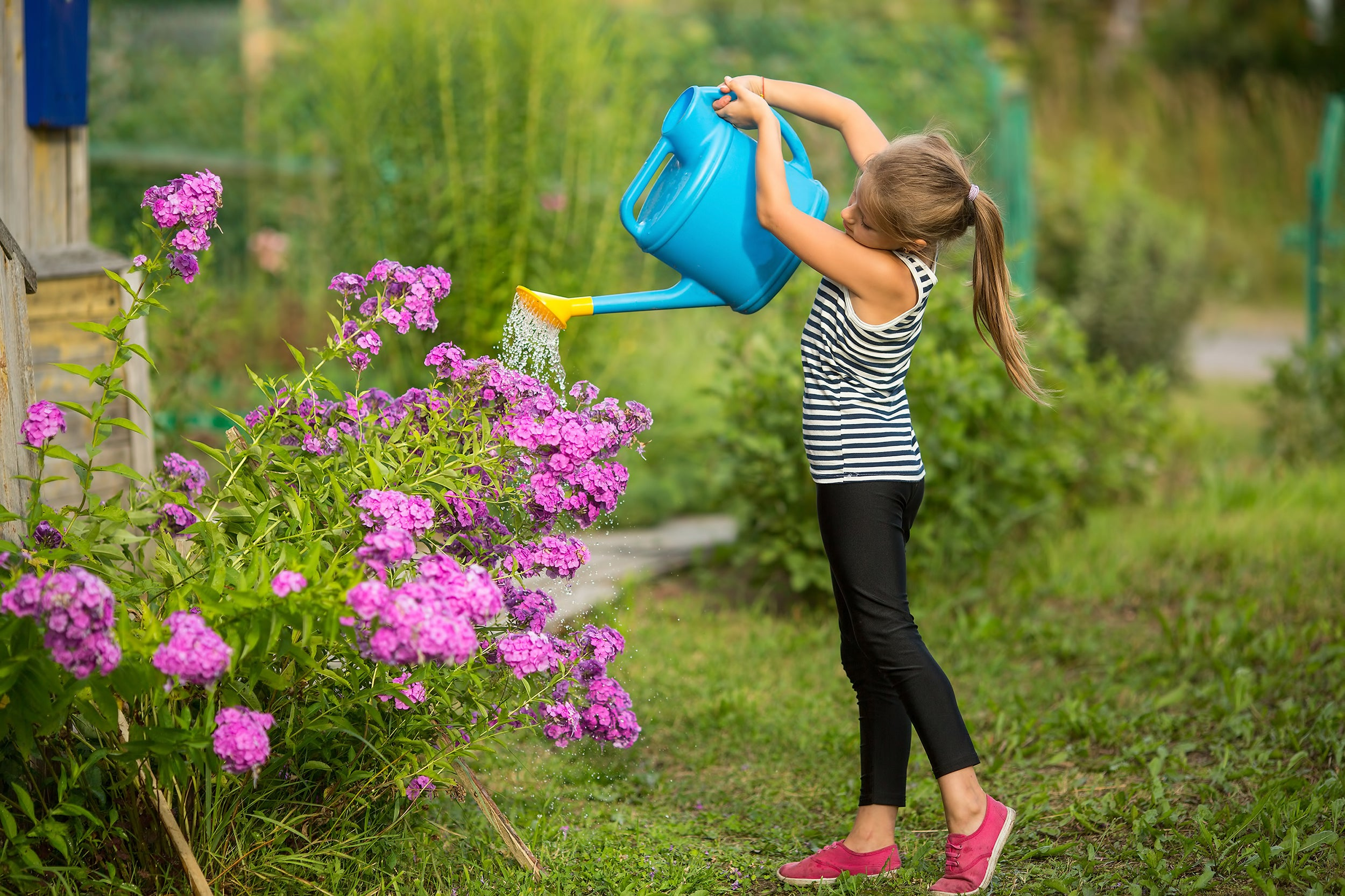 Random Acts of Kindness Ideas for Kids - doing other peoples chores like watering plants