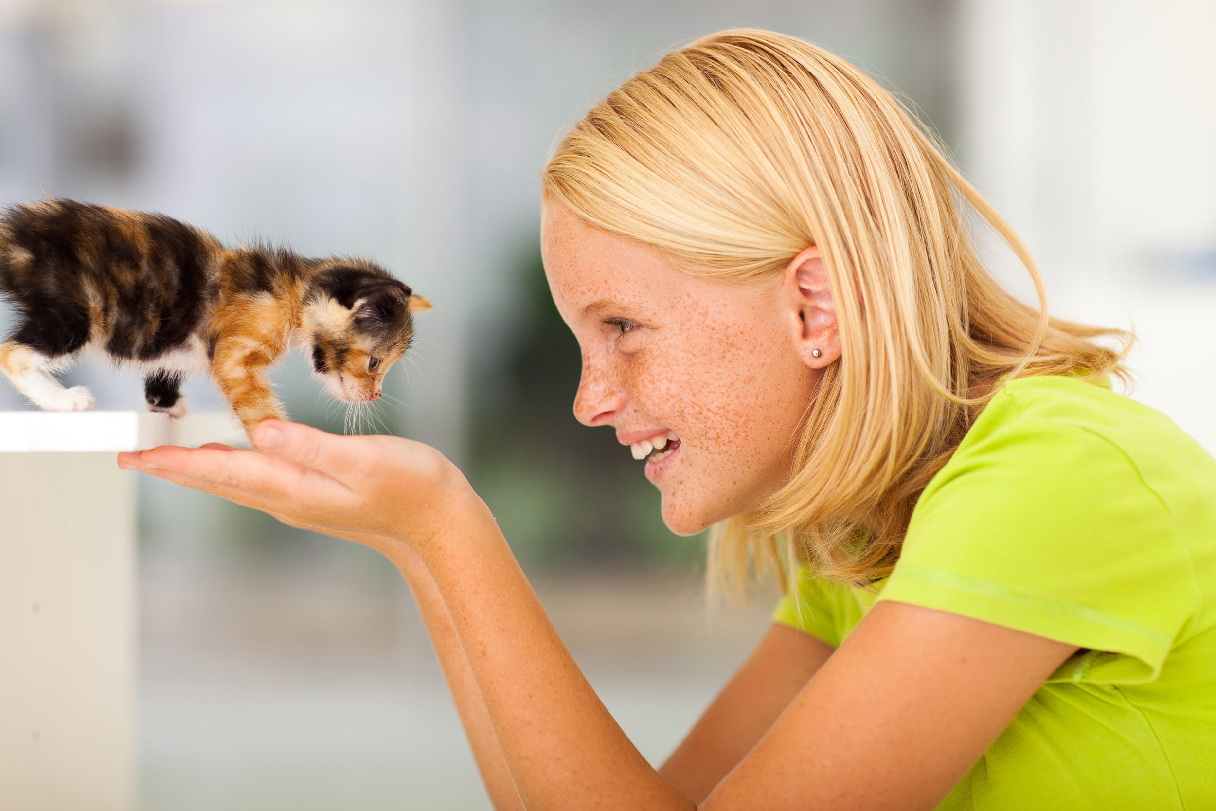 Random Acts of Kindness Ideas for Kids - volunteering at an animal shelter