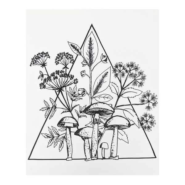 Poisonous Plants Triangle