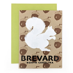 Brevard White Squirrel with Acorns Card