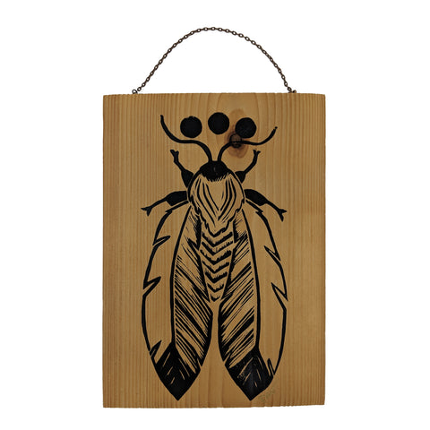Feather Moth on Wood