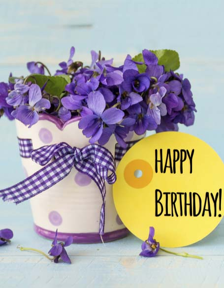New York Delivery - Birthday Flower Gifts