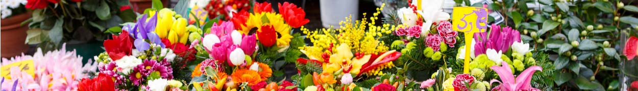 Bestsellers Flower Gifts - New Jersey Blooms Gifts - New Jersey Flower Delivery
