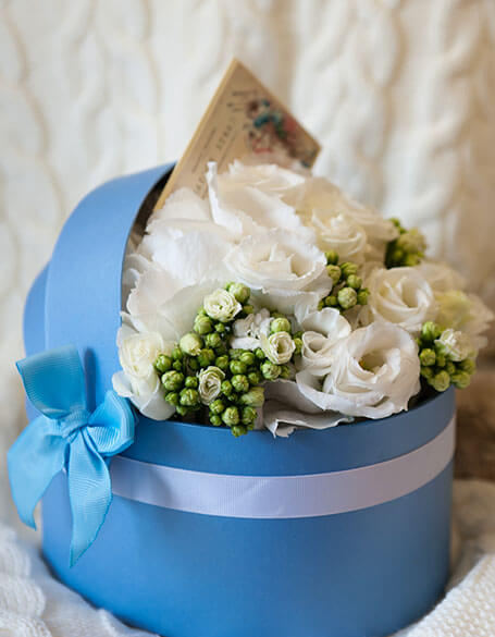 Blooms Insider Plant Gifts - New Jersey Blooms Gifts - New Jersey Flower Delivery