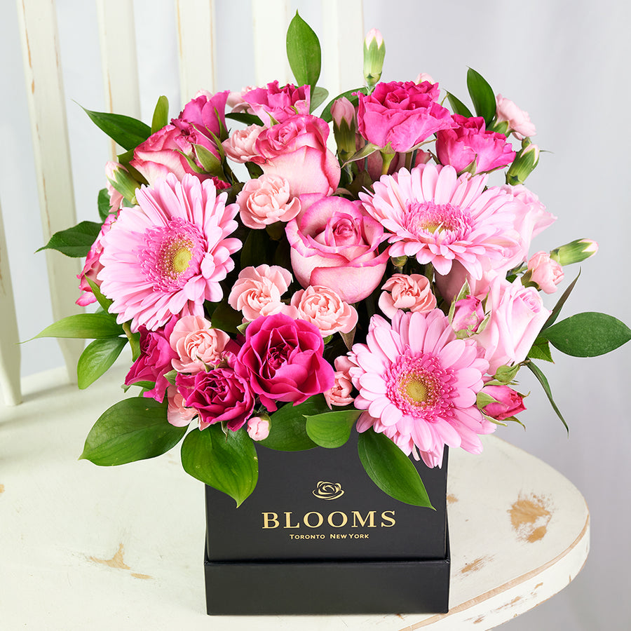 Colour Crazed Carnations Flower Gift - Mixed Floral Hat Box - Same Day Toronto Delivery