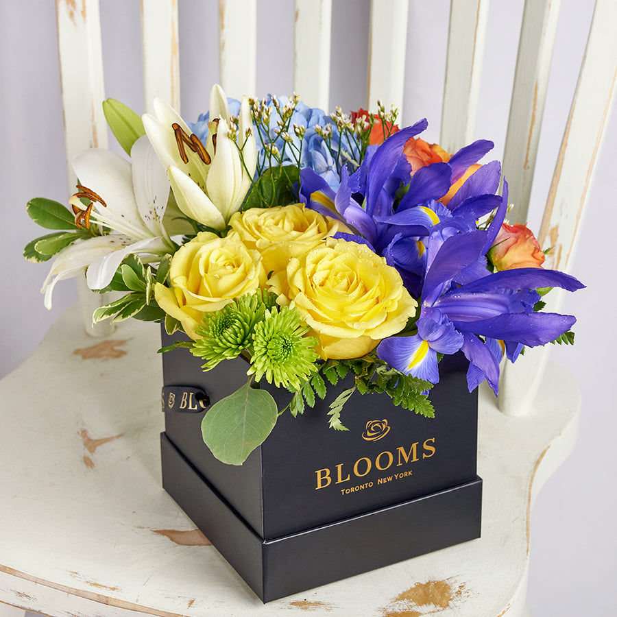 Iris and mixed floral box arrangement. Same Day Toronto Delivery