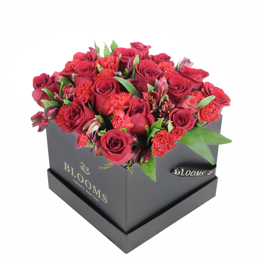 Red Radiance Hat Box - Red Rose Toronto Delivery