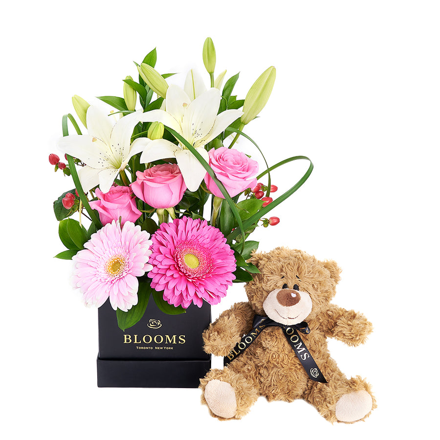 Gerbera Floral Arrangement & Bear Gift Set – Floral Gifts – Toronto delivery