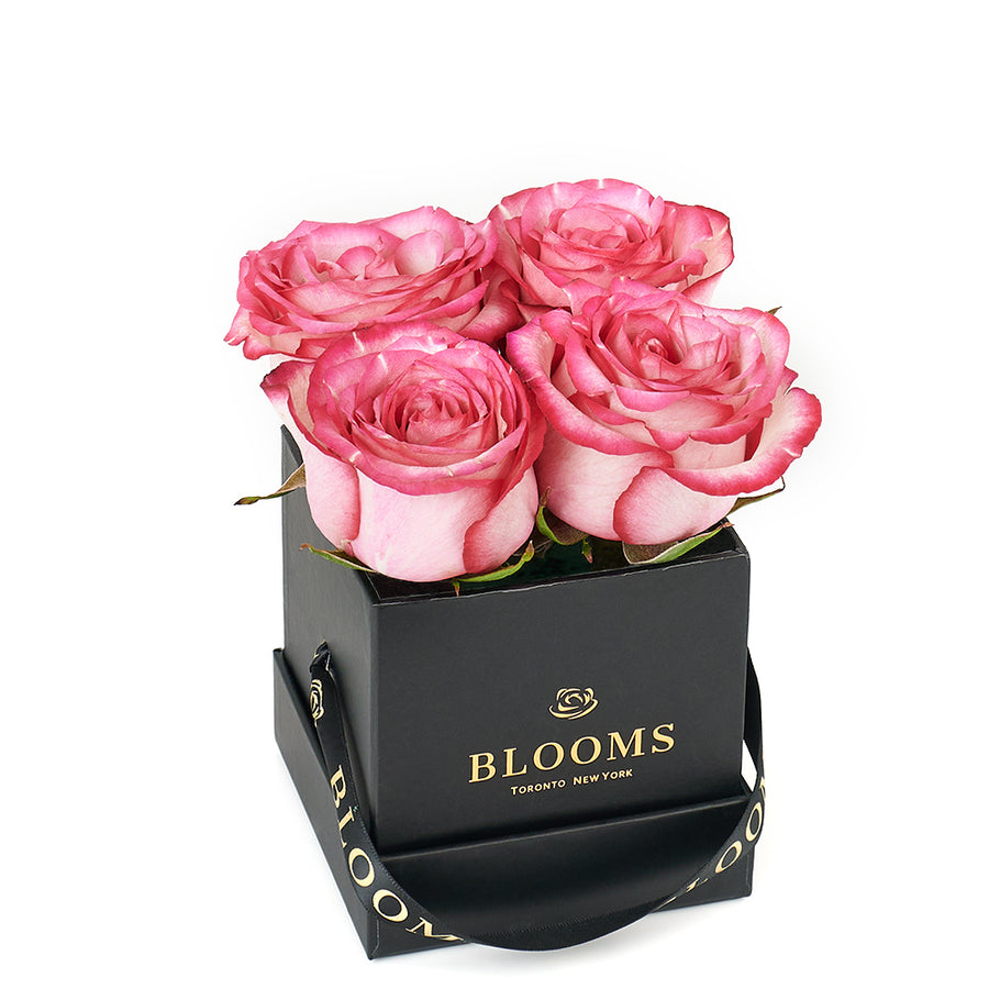 Mother's Day Demure Pink Rose Gift