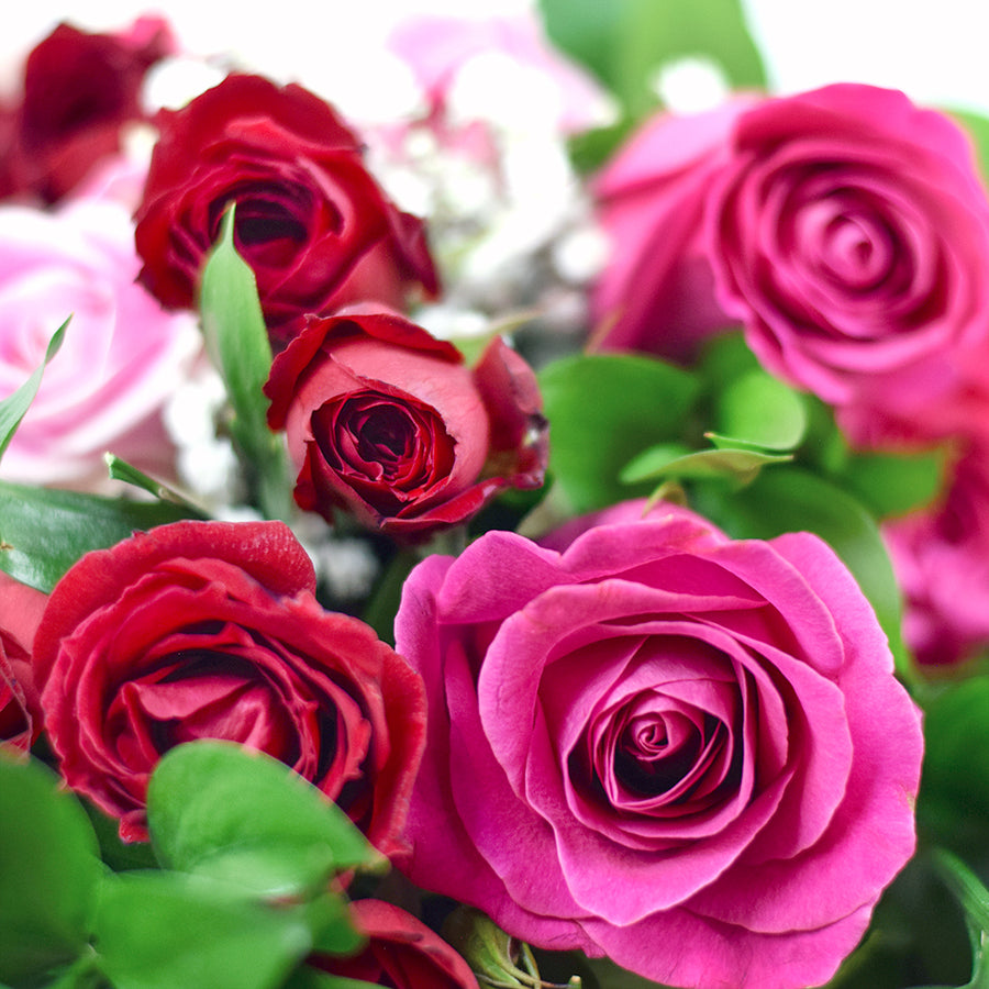 Pink and Red Roses Toronto - Toronto Same Day Flower Delivery - Toronto Flower Gifts