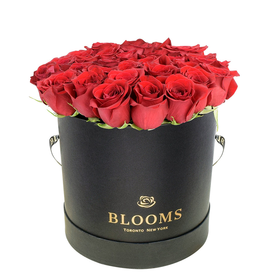 Red Vibrancy Box Rose Set