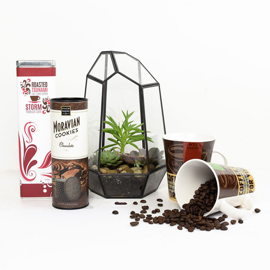 The Perfect Morning Terrarium Gift Set