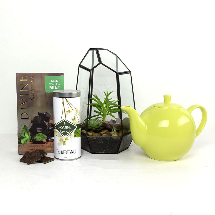Time To Unwind Terrarium Gift Set