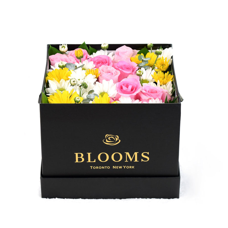 Mixed flower Rose and Daisies box - Same Day Toronto Delivery