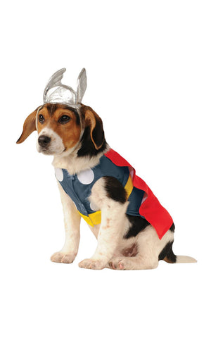 Pet Thor - Dog Costume