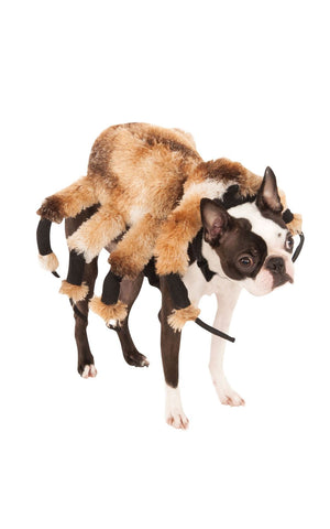 Pet Giant Spider Dog Costume