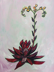 """First Blush"" Succulent Painting - Original Art on Canvas"