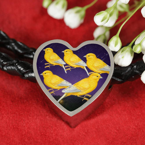Domestic Canary Bird Print Heart Charm Leather Woven Bracelet-Free Shipping