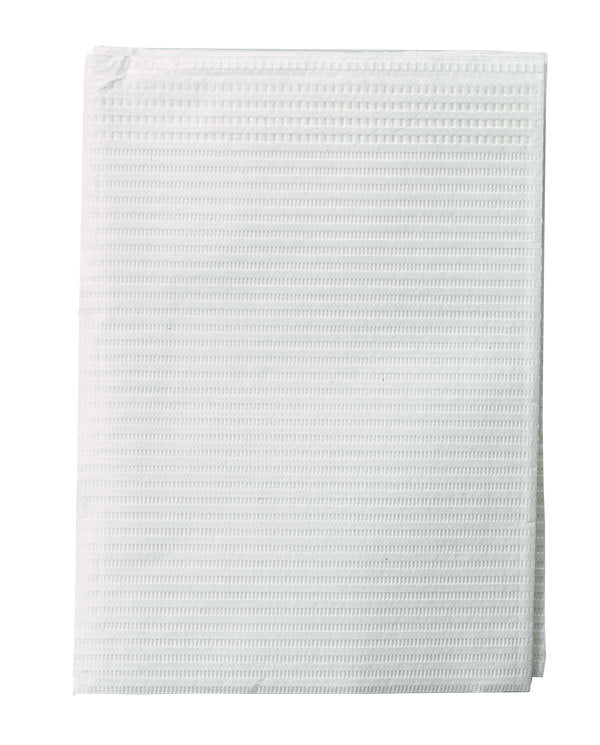 Poly Gard Head Towel  500/PK
