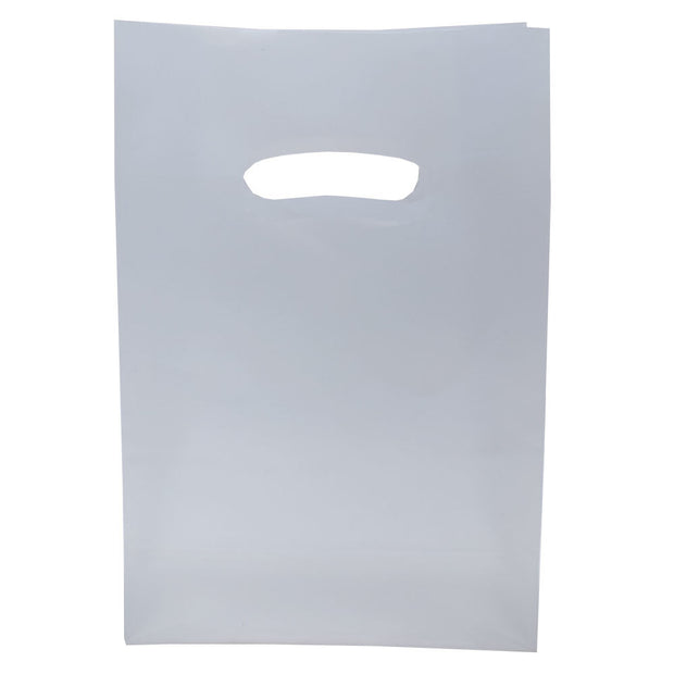 Frosted Retail Bag - Small - 20/PK