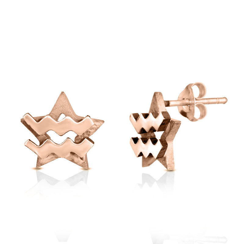 The W Brothers hand-crafted premium 925 Sterling silver star-sign stud earrings crafted in the highest quality of sterling silver with an oxidized star sign in the back with the beautiful aquarius water symbol projecting on the front. Available in premium sterling silver, real 18k yellow gold & rose gold. Shop your original look only at thewbros.com