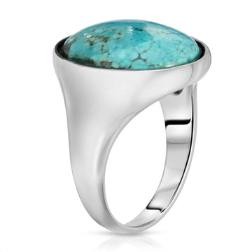 The W Brothers blue turquoise gemstone ring sterling silver rings beautiful design