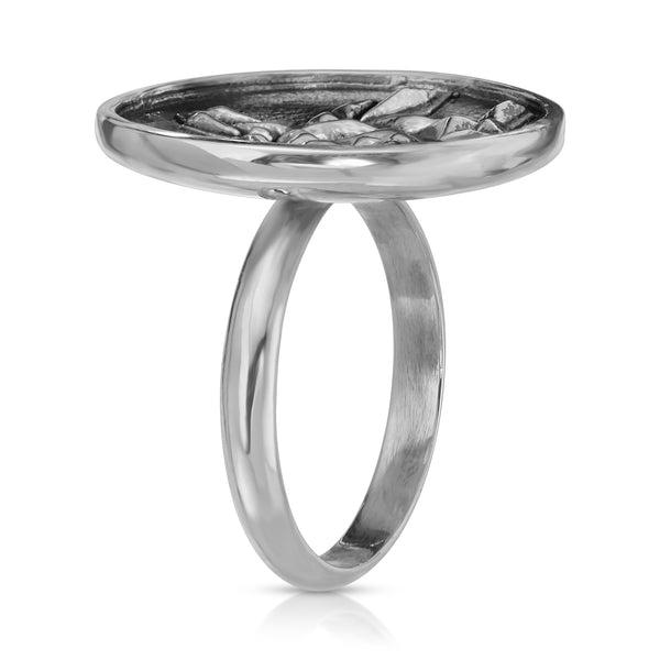 The W Brothers Premium Grade A 925 Sterling Silver Geometric Turtle Ring, perfect for a fashionable statement for men and women's jewelry accessory. Available at www.thewbros.com