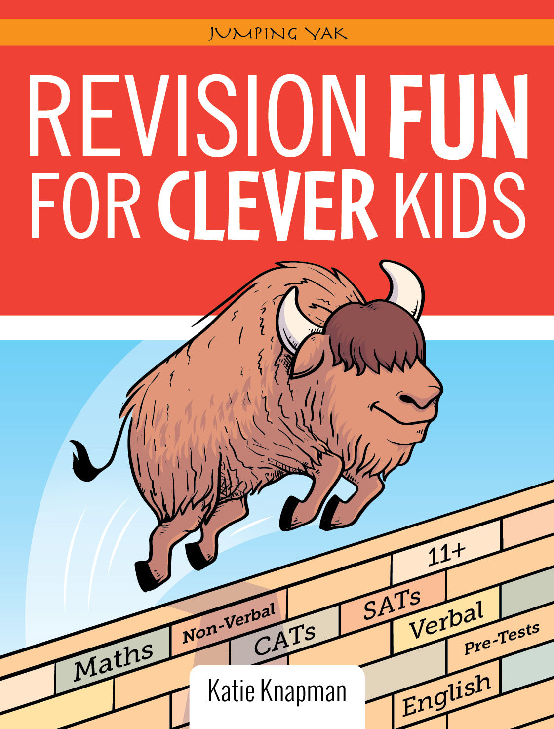 REVISION FUN FOR CLEVER KIDS