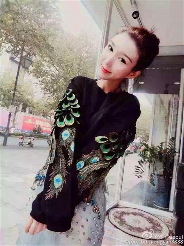 Embroidery Peacock Wing Sleeve with Round Collar Loose Pullover Sweater