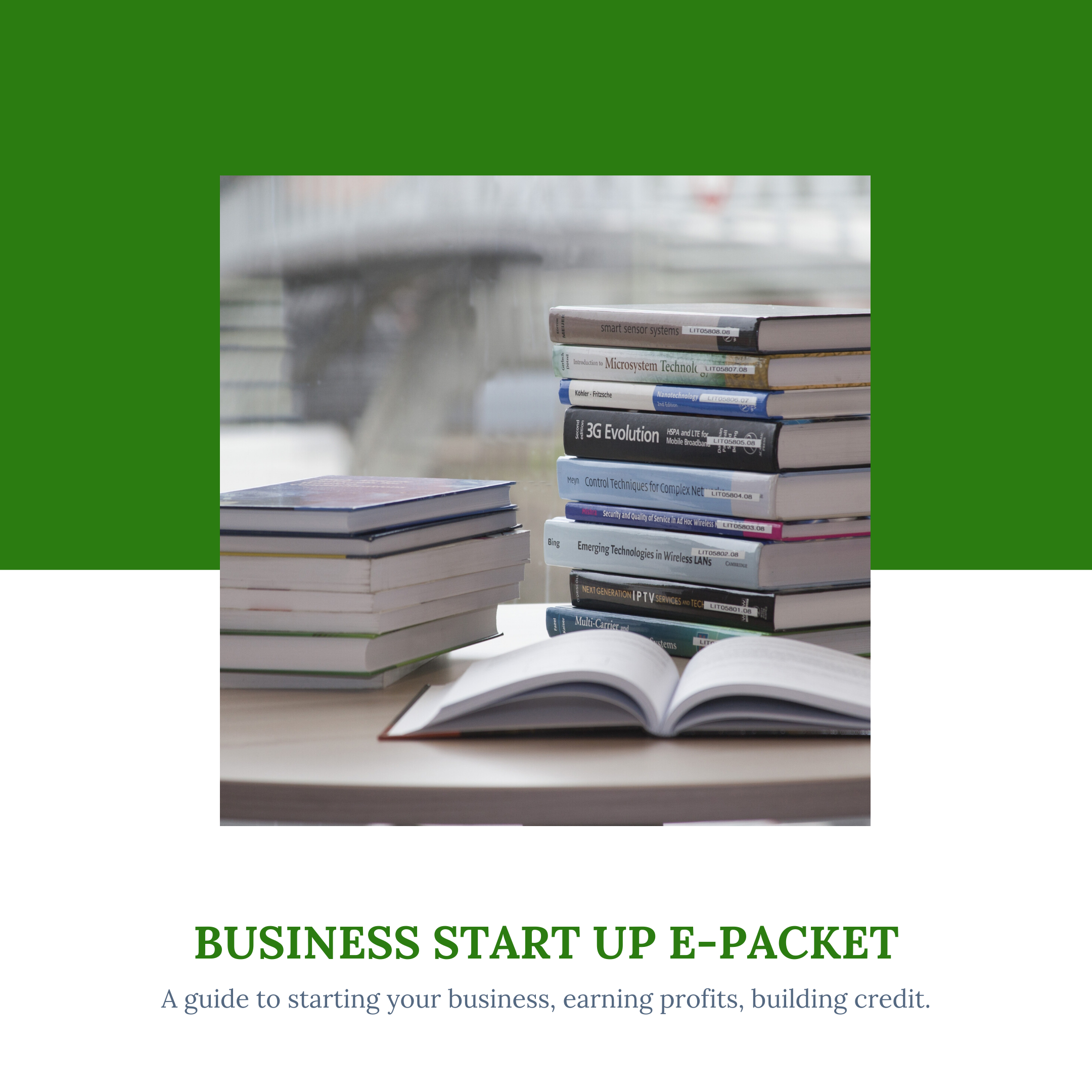 Start-Up Business E- Packet - TS Skin Co.