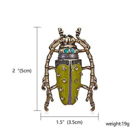 Insect Beetle Enamel Jewelry