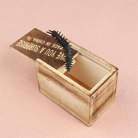 Scary Insect Box Gag Gift